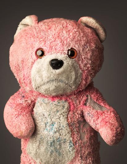 foto teddy